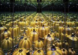 Mirror Room (Pumpkin)