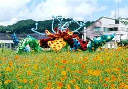 Tsumari in Bloom